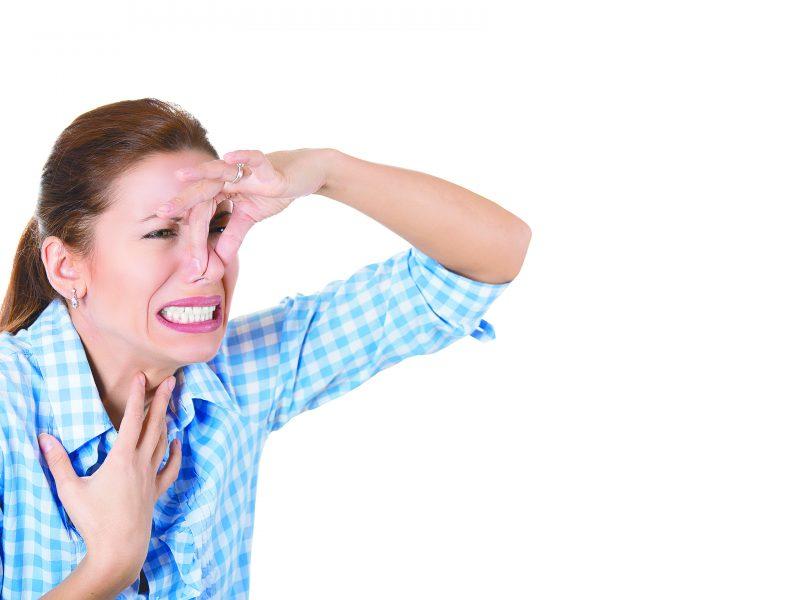 L brate de los malos olores en casa saltillo360 - Malos olores en casa ...