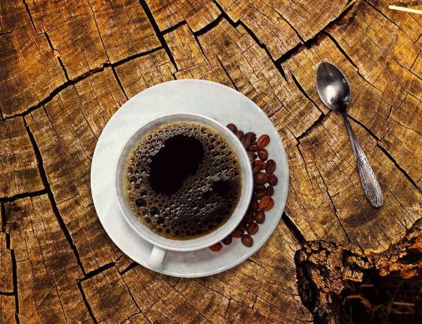 EL CAFÉ LITERARIO ½
