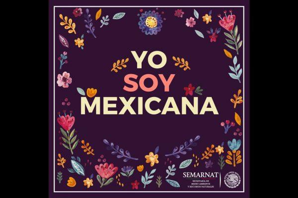 Tiene por objetivo sensibilizar sobre el papel de la mujer mexicana en la sociedad y sobre las desigualdades de género