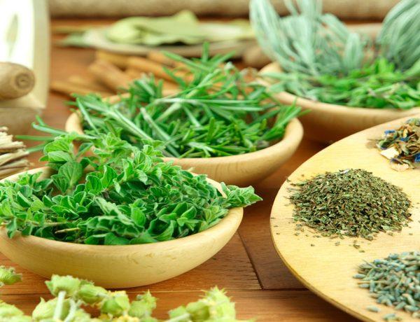 Aportan aroma, sabor y nutrientes