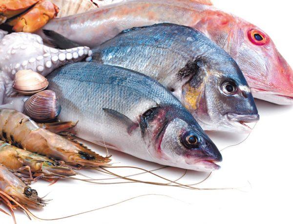 El porcentaje de grasa que contiene cada unas de las especies es el factor determinante sobre cómo cocinarlo