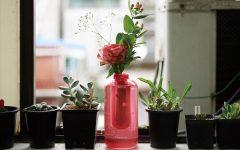 El extintor, además de protegerte del fuego, también brindará un toque primaveral a tu hogar.