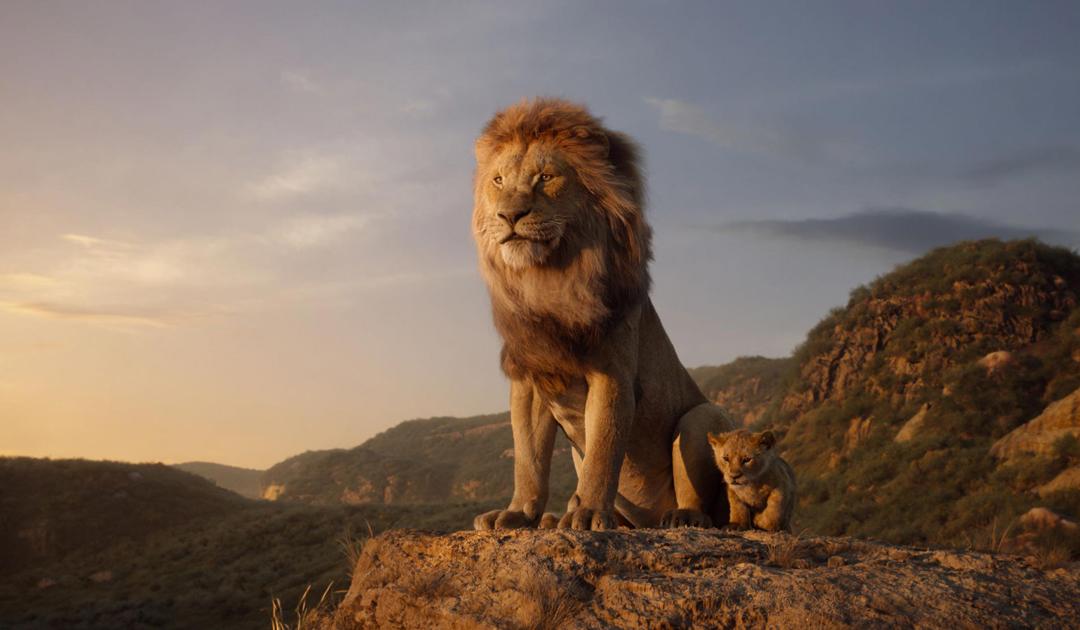 Frases rey leon