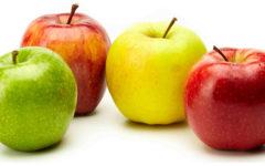 temporada manzanas