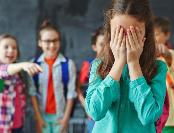 Bulying acoso escolar