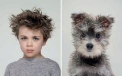 Por qué los perros se parecen a sus dueños