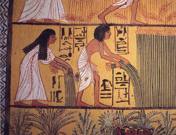 Cerveza y miel en egipto