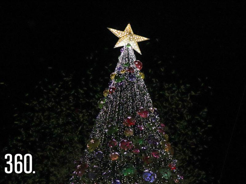 Encendido del pino navideño.