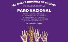Los colectivos feministas convocan a las mujeres a quedarse en sus casas y no consumir nada el lunes 9 de marzo.