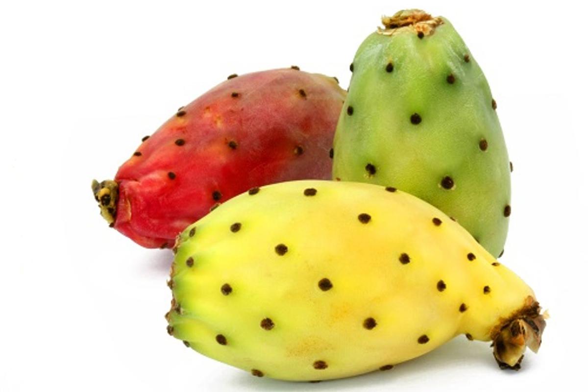 Ya sean cocidos, asados o en guisos, son uno de los alimentos icónicos del país y una buena opción para la Cuaresma