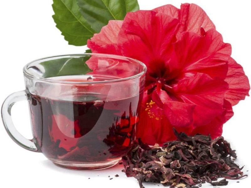 Beneficios flor de jamaica