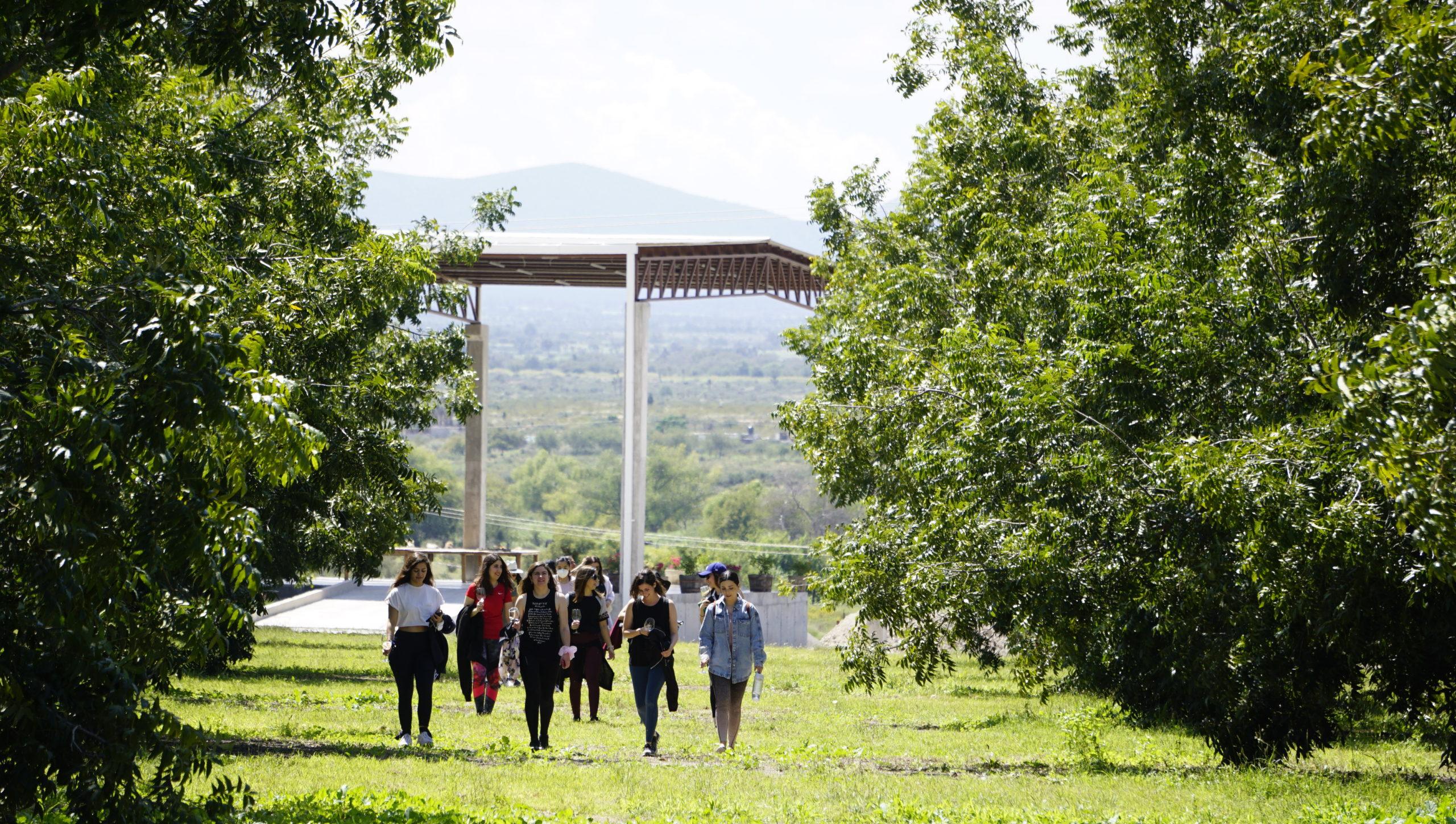 Los asistentes pasearon por los viñedos y disfrutaron de la naturaleza.