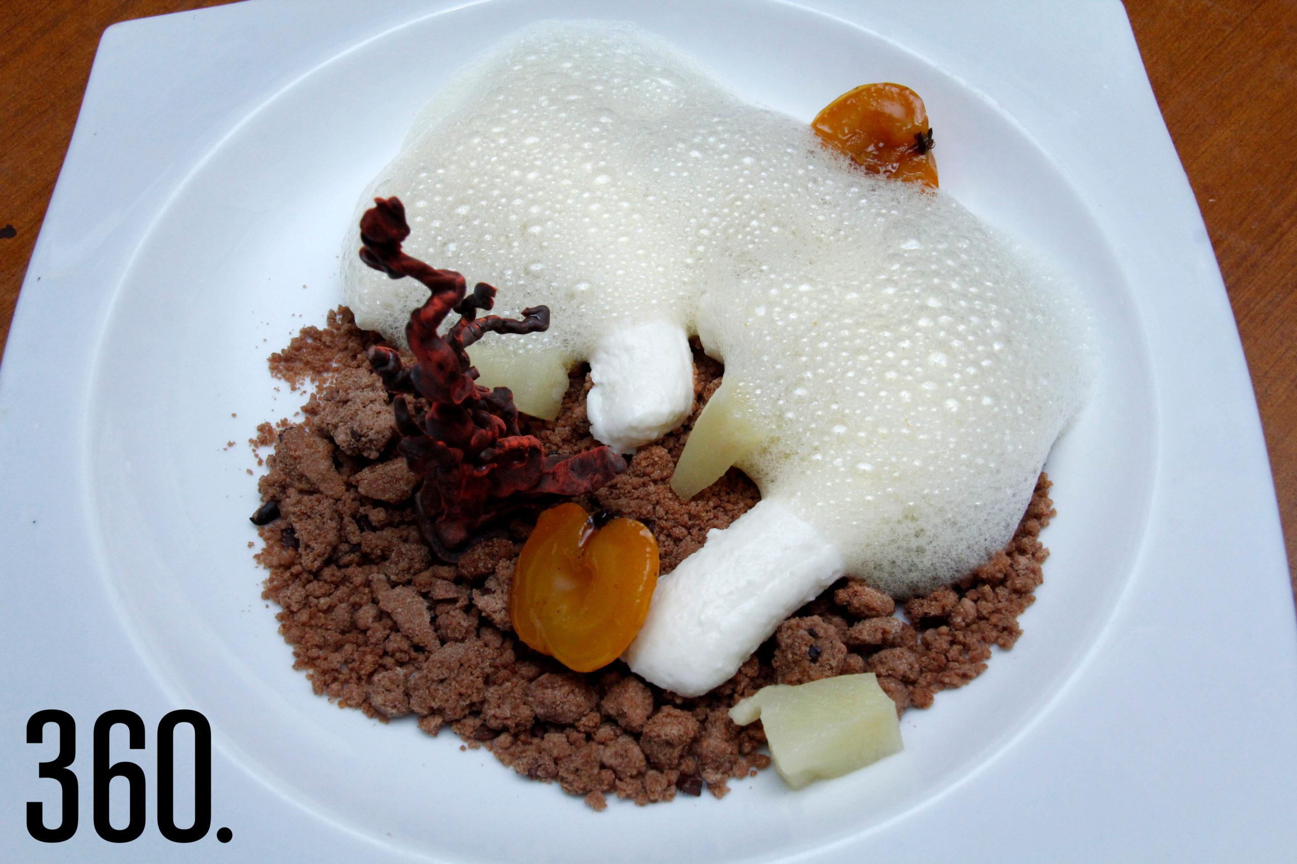 El postre, pulpo mimetizado de coco, en coral de chocolate, piña en almíbar, tejocote confitado y aire de maracuyá.