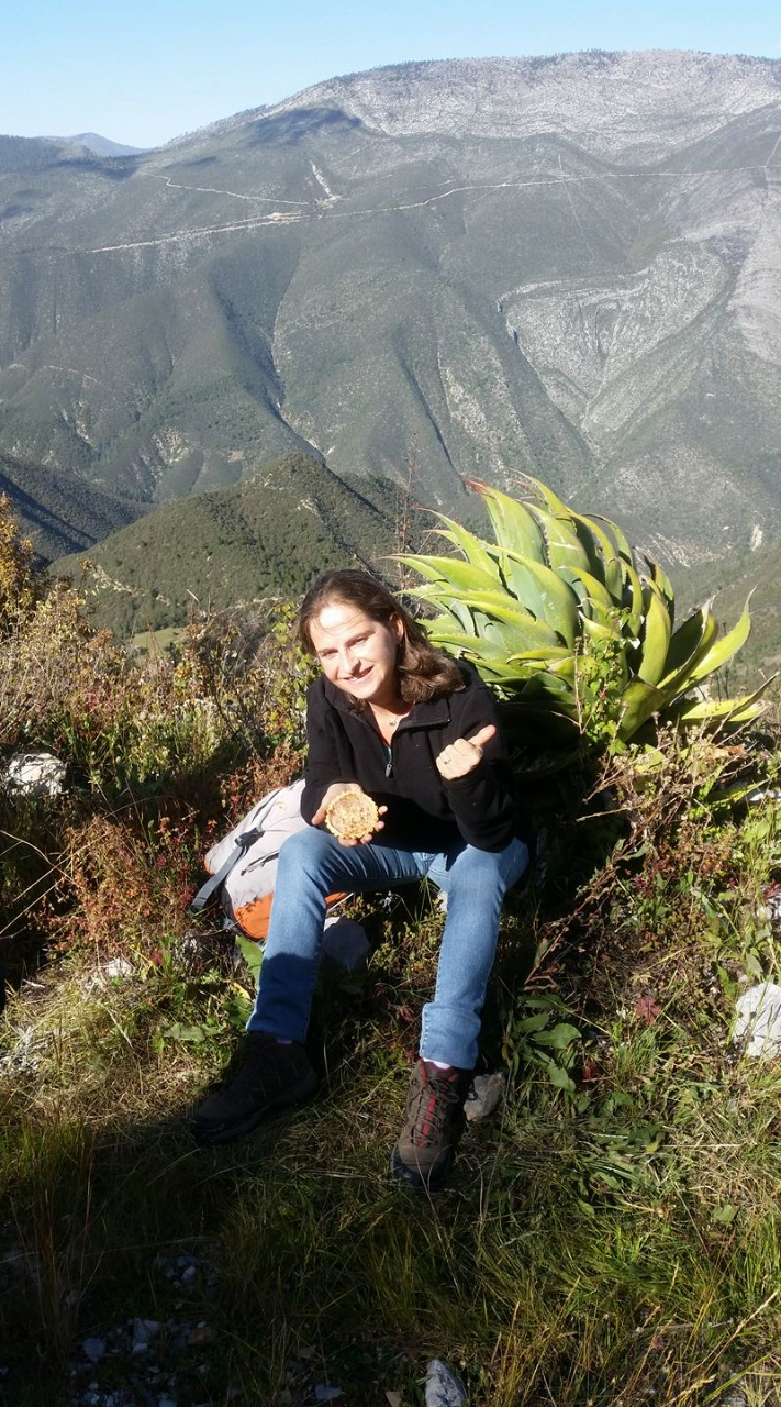 En la Sierra de Arteaga.