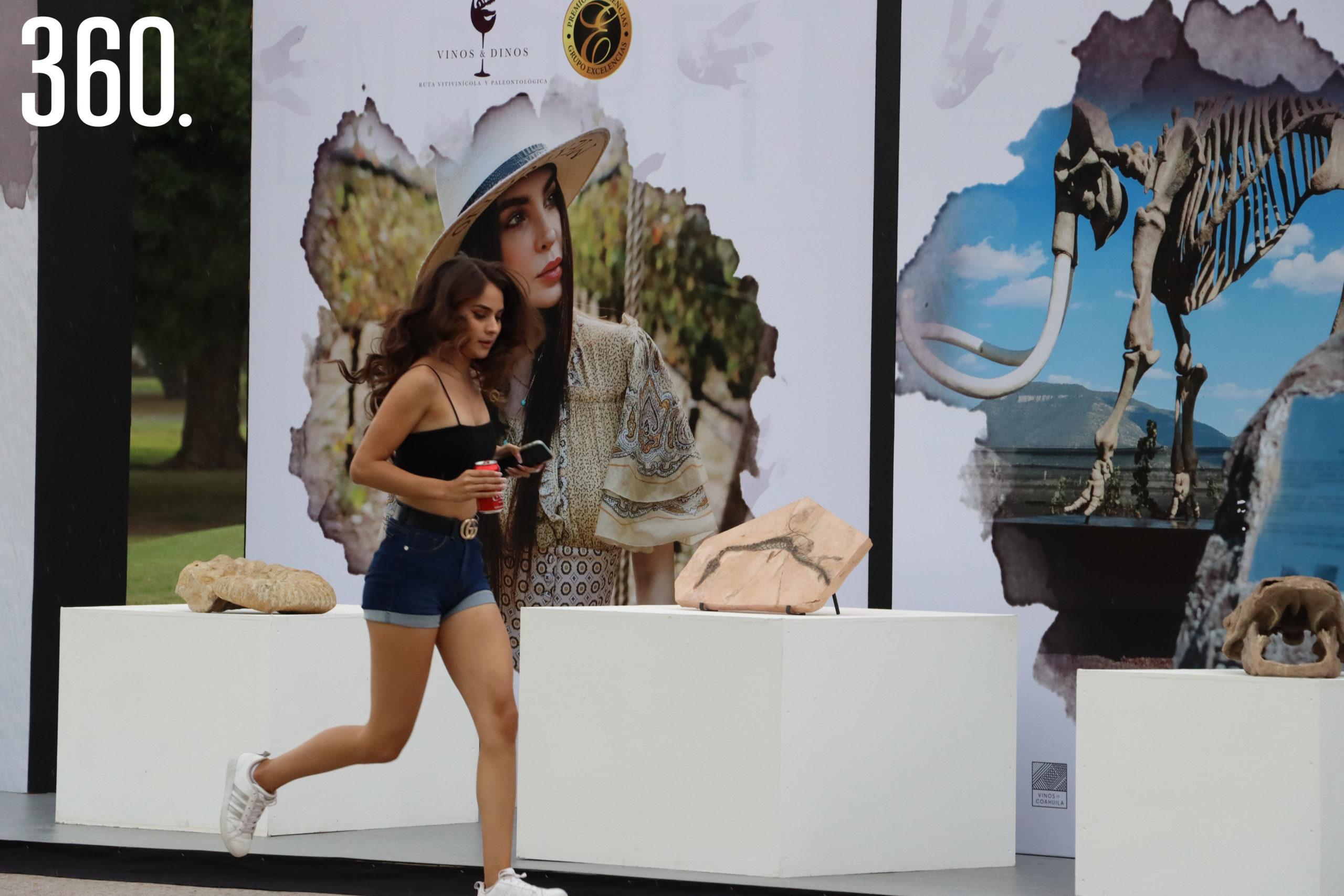Exposición de la Ruta Vinos y Dinos.